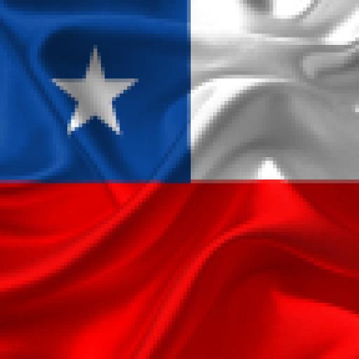 www.purochile.net